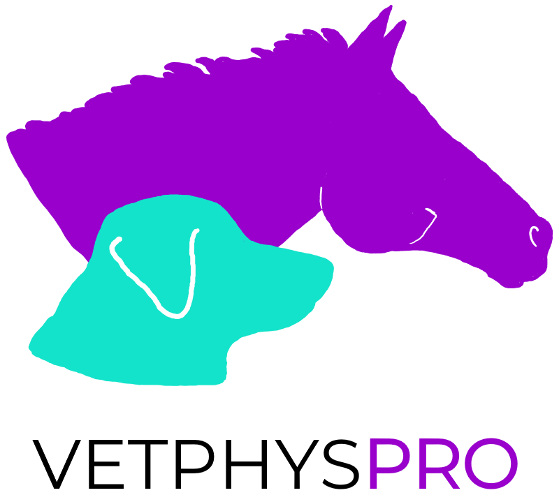 VETPHYSPRO logo - a client of Digital Lychee