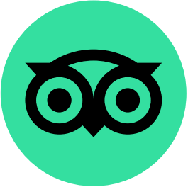 Tripadvisor Favicon for Digital Lychee Favicon Blog - Green Circle with Black Outlined Owl Eyes